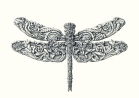 08 - Dragonfly