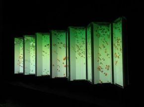40 - Hidetomo Kimura - Art Aquarium