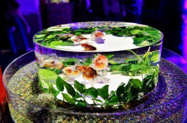 20 - Hidetomo Kimura - Art Aquarium