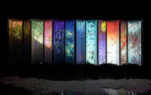 13 - Hidetomo Kimura - Art Aquarium