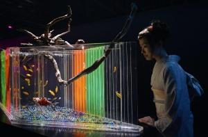 08 - Hidetomo Kimura - Art Aquarium