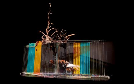 05 - Hidetomo Kimura - Art Aquarium